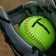 OISA_web_softball_catch