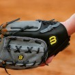 OISA_web_softball_glove
