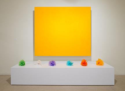 Alejandro Diaz, The Color Field